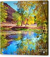 Autumn Colours In Moab Acrylic Print