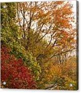 Autumn Comes To The Burbs Acrylic Print