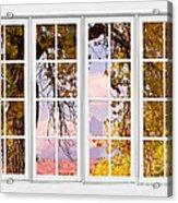 Autumn Cottonwood Tree Longs Peak White Window View Acrylic Print