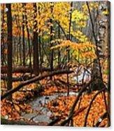 Autumn Creek In The Rain Acrylic Print