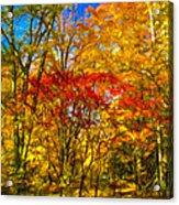 Autumn Cul-de-sac - Paint Acrylic Print