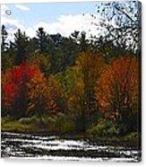 Autumn Dreaming Adwc Acrylic Print