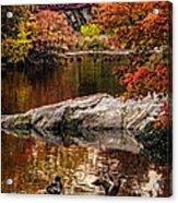 Autumn Duck Couple Acrylic Print