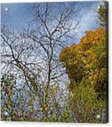 Autumn Ending Acrylic Print