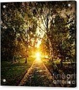 Autumn Fall Park Acrylic Print