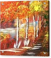 Autumn Falling Leaves  Acrylic Print