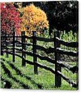 Autumn Fence And Shadows Acrylic Print
