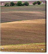 Autumn Fields Of Moravia Acrylic Print