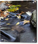 Autumn Flow Acrylic Print by Andrew Pacheco