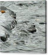 Autumn Flow Acrylic Print