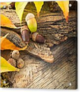 Autumn Forest Background Acrylic Print