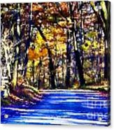 Autumn Forest Road V6 Acrylic Print