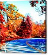 Autumn Forest Road V7 Acrylic Print