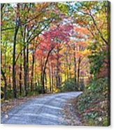 Autumn Forest Trail Acrylic Print by Bob Jackson