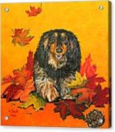 Autumn Fun Acrylic Print