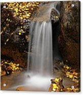 Autumn Gold And Waterfall Acrylic Print by Leland D Howard