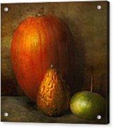 Autumn - Gourd - Melon Family  Acrylic Print by Mike Savad