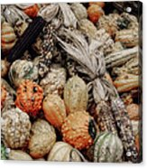 Autumn Gourds 2 Acrylic Print