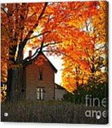 Autumn Haunt Acrylic Print