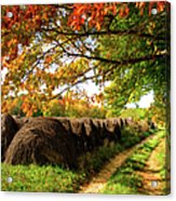 Autumn Hay Bales Blue Ridge Mountains II Acrylic Print