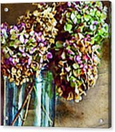 Autumn Hydrangeas Photoart Acrylic Print