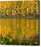 Autumn Impressions 2 Acrylic Print