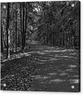 Autumn In Black And White Acrylic Print