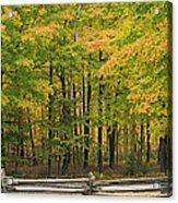 Autumn In Door County Acrylic Print