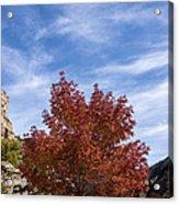Autumn In Glenwood Canyon - Colorado Acrylic Print
