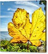 Autumn In Lyme Regis Acrylic Print