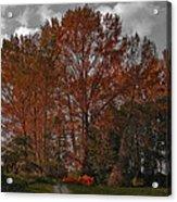 Autumn In Mt Vernon Acrylic Print