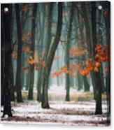 Autumn In My Soul Acrylic Print