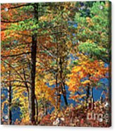 Autumn In New Jersey Acrylic Print