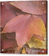 Autumn In Textures Acrylic Print