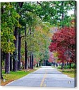 Autumn In The Air Acrylic Print