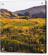 Autumn In The Colorado Mountains Acrylic Print