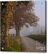 Autumn In The Cove Acrylic Print