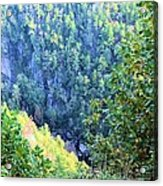 Autumn In The Gorge Acrylic Print