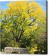 Autumn In The Park Acrylic Print