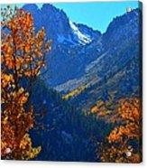 Autumn In The Sierras Acrylic Print