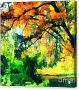Autumn In The Woods Acrylic Print by Odon Czintos