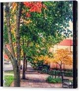 Autumn In Vancouver Washington Acrylic Print