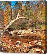 Autumn In Virginia Acrylic Print