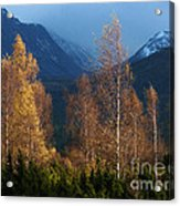 Autumn Into Winter - Cairngorm Mountains Acrylic Print
