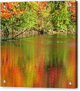 Autumn Iridescence Acrylic Print