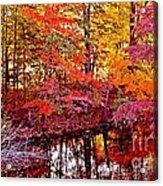 Autumn Is Too Hot Acrylic Print