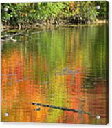 Autumn Jewel Acrylic Print