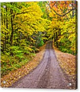 Autumn Journey Acrylic Print