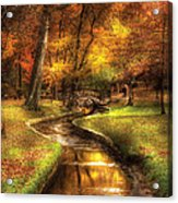 Autumn - Landscape - By A Little Bridge  Acrylic Print by Mike Savad