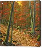 Autumn Leaf Litter Acrylic Print